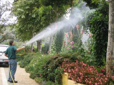 Bahçe İlaçlama Fiyatları